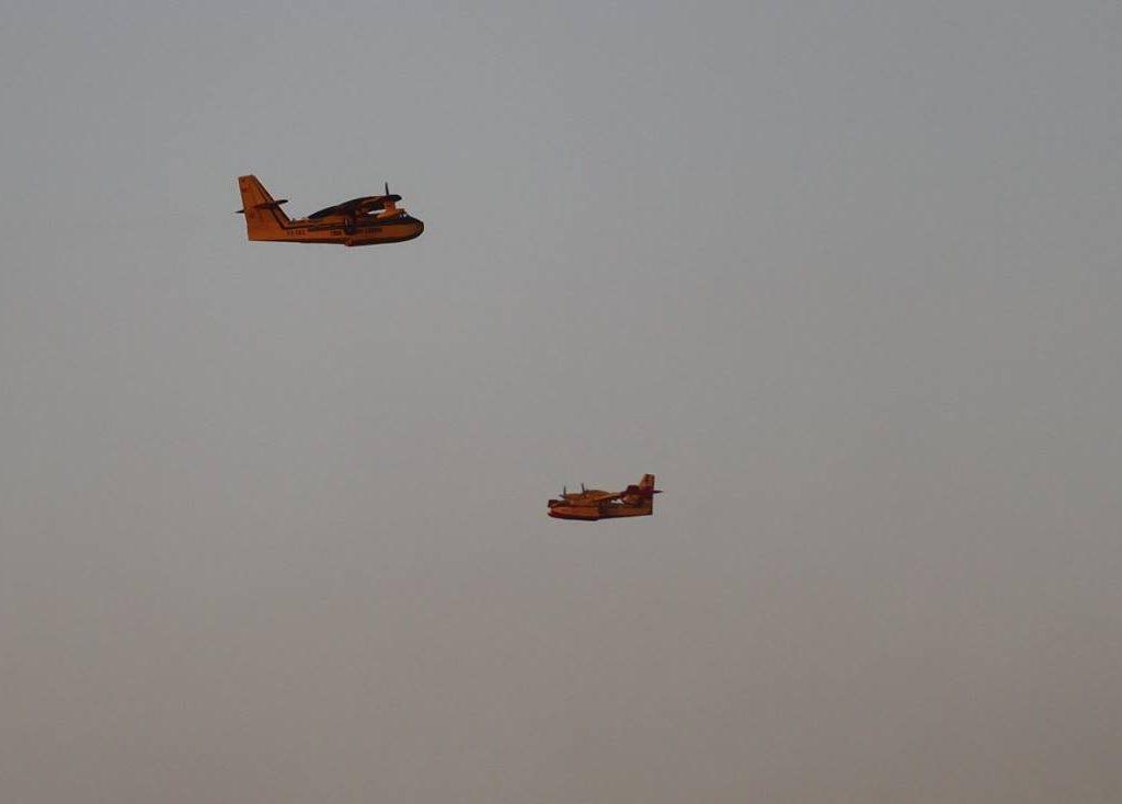 cl-215-rami-mizrahi-1024